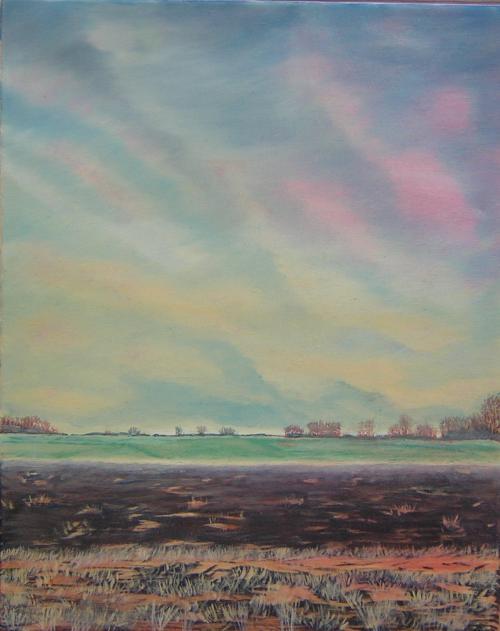 De polder Oostwold Oldambt - 2002 - olieverf schilderij
